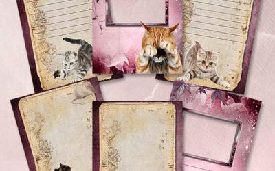 Школьное портфолио «Люблю кошек»